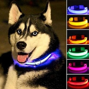 Nylon LED Pet dog Collar,Night Safety Flashing Glow In The Dark Dog Leash