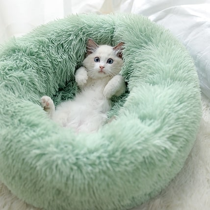 BED FOR CAT LOVER