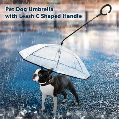 Pet Dog Umbrella with Leash C in Rainy Day