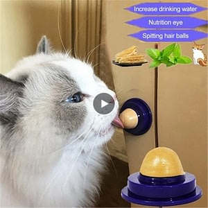 Cat Snacks Catnip Sugar Candy Licking Nutrition