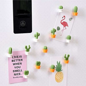 6pcs/Set Fridge Magnets Cactus Refrigerator