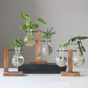 Vintage Style Glass Desktop Plant Bonsai Flower